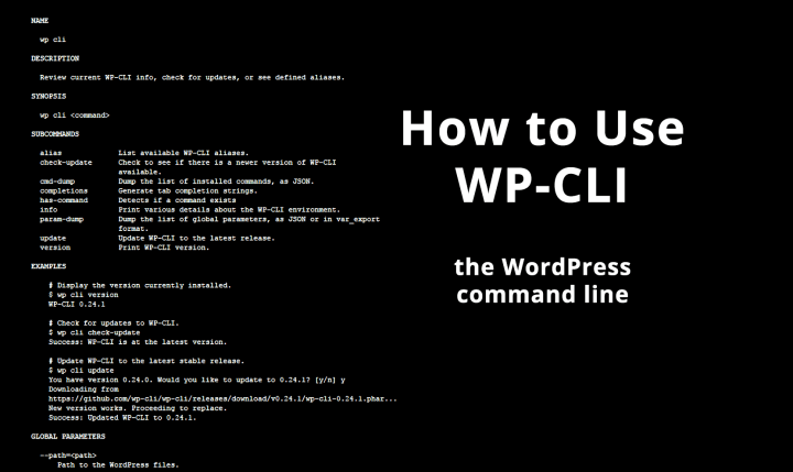 How to Use WP-CLI